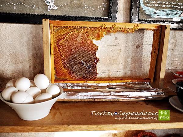 整片蜂巢隨你吃.jpg