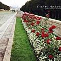 石獅大道兩旁種滿玫瑰花.jpg