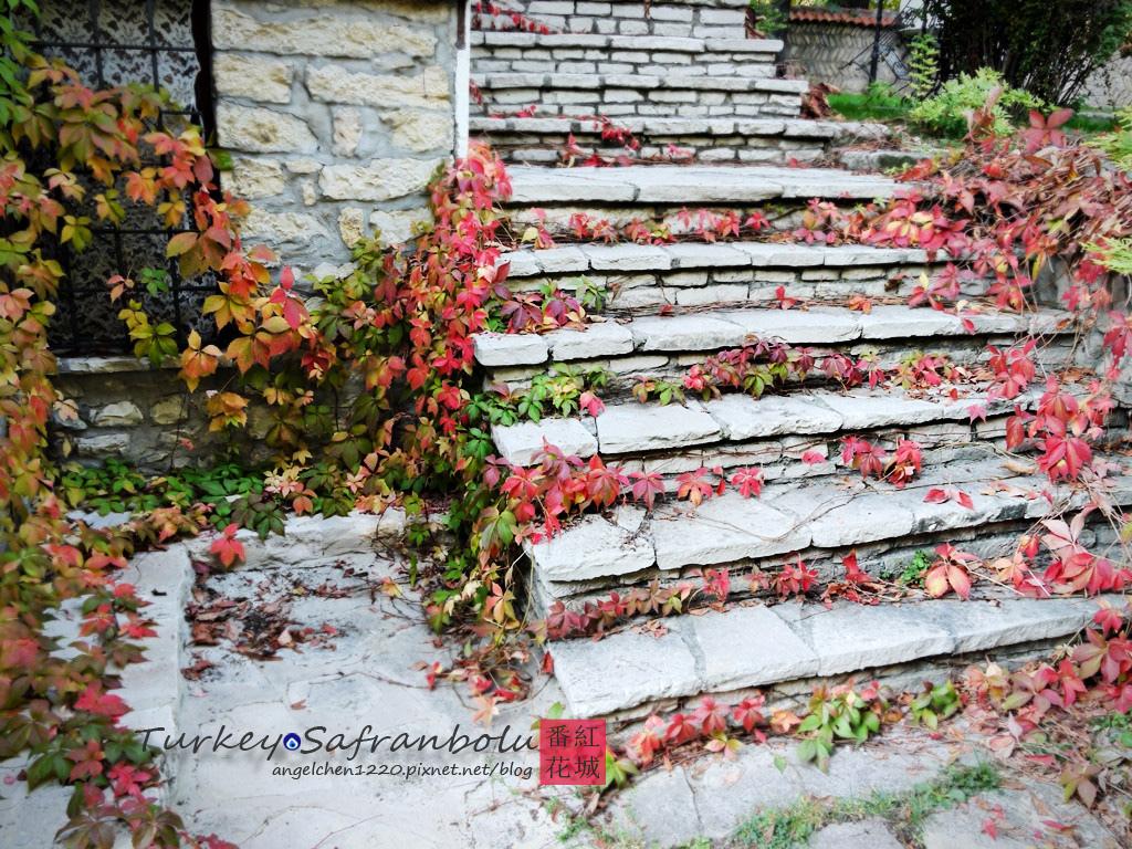 連樓梯也別有風情.jpg