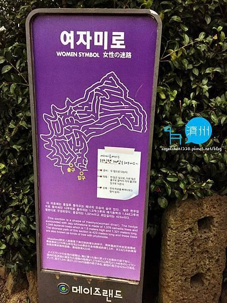 Maze Land-2.jpg