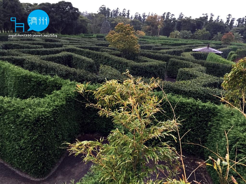 Maze Land-3.jpg