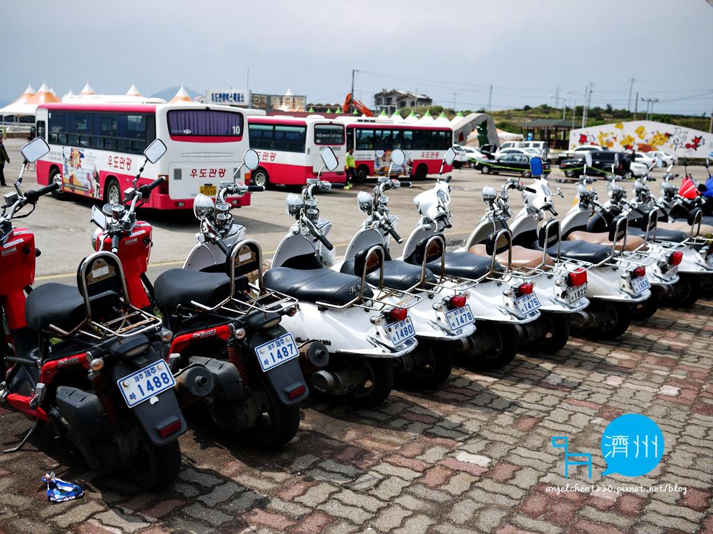台灣駕照無法在濟州島租借摩托車.jpg