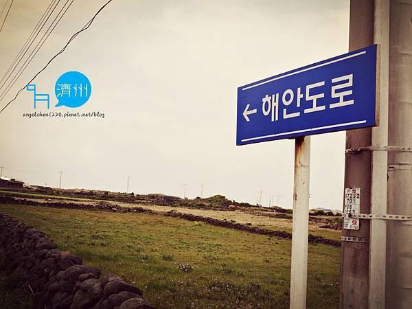 牛島海岸道路-3.jpg
