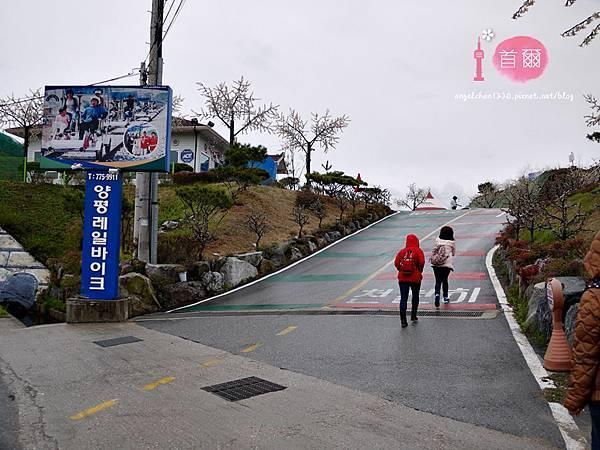 楊平鐵路腳踏車怎麼去-4.jpg