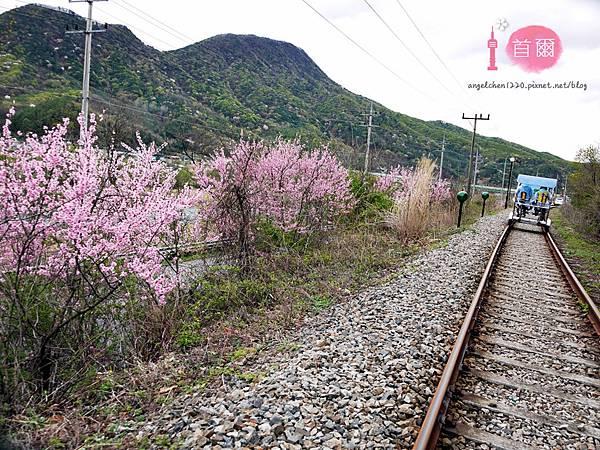 楊平鐵路腳踏車-18.jpg