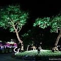 入口處的大樹.jpg