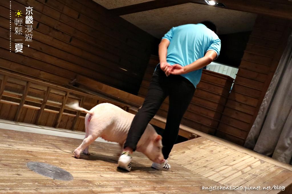 第二隻小豬奉子.jpg