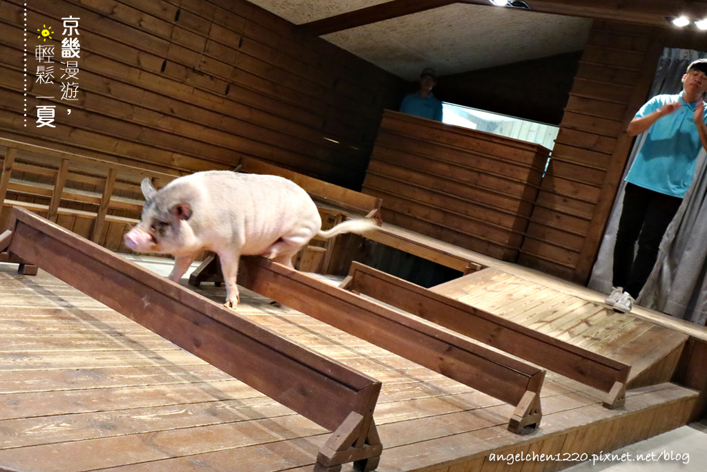 第三隻小豬克里司馬.jpg