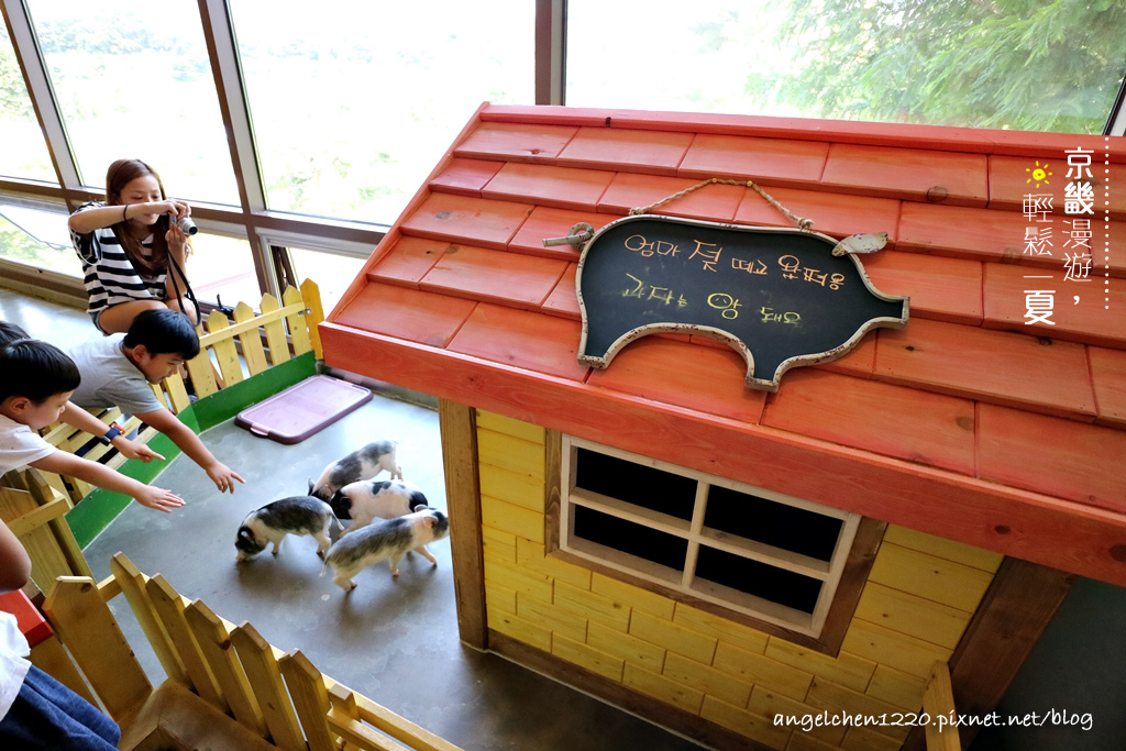這裡可以讓小朋友和小豬一起玩樂.jpg
