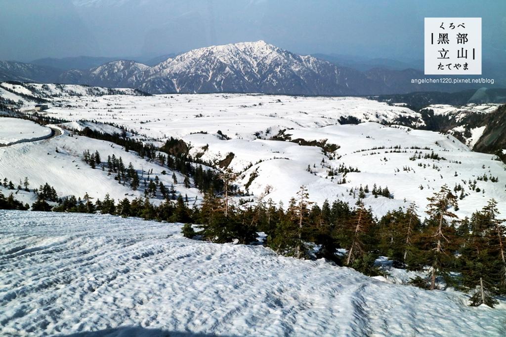 前往美女平的立山高原巴士-3.jpg