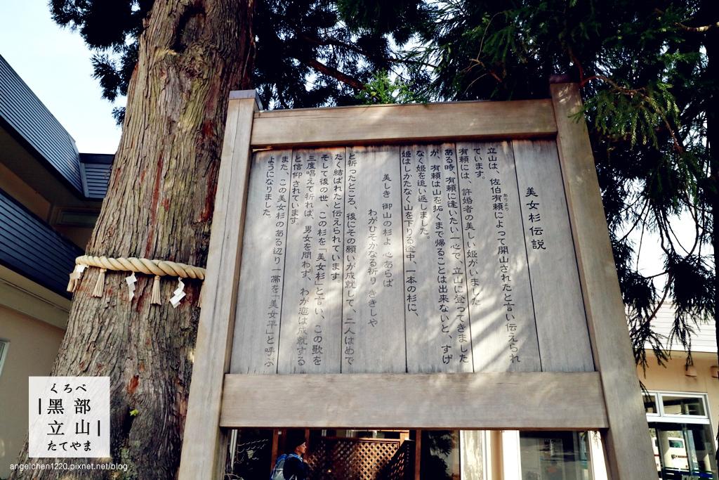 美女平站-3.jpg