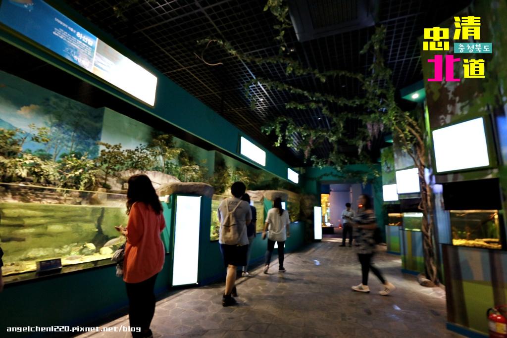 Danuri水族館-12.jpg
