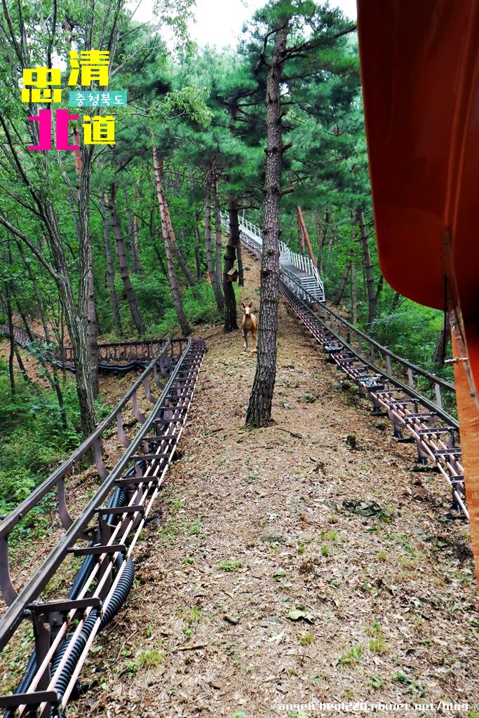 單軌列車-11.jpg