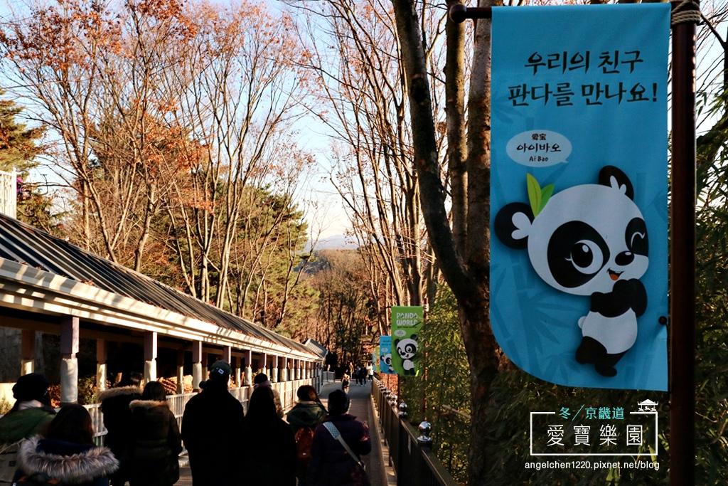 熊貓世界-2.jpg