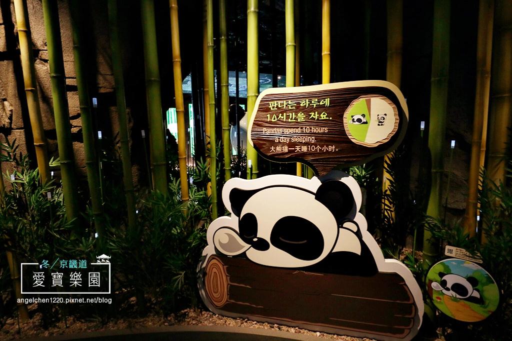 熊貓世界-6.jpg