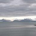 港口4.jpg