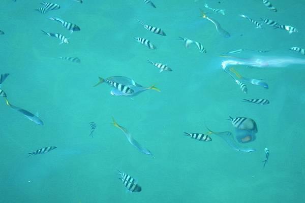 GBR 清澈的水 2.jpg