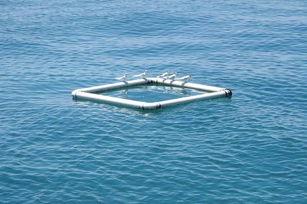GBR sea.jpg