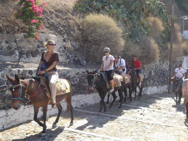 騎驢子.JPG