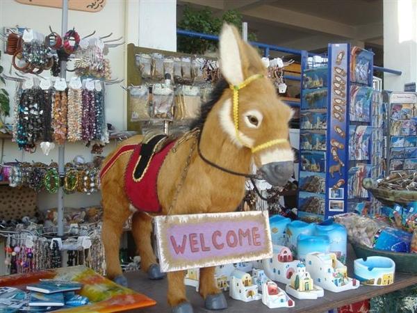 驢子紀念品1.JPG