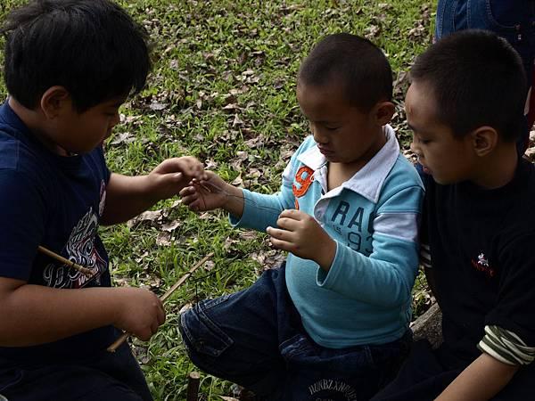 當地孩子教來自台北的孩子做陷阱