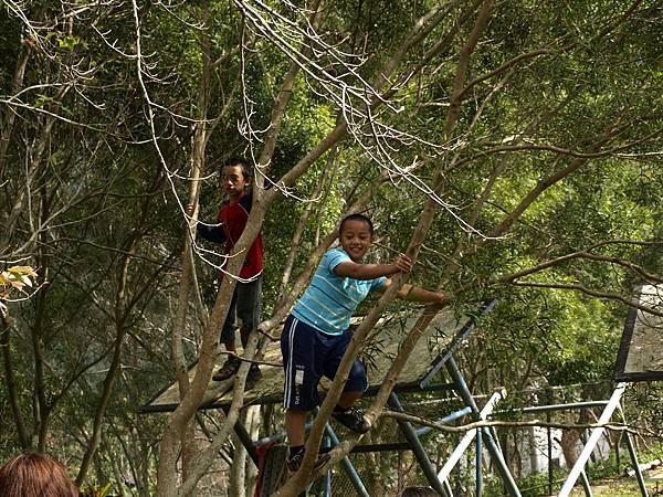 不免調皮地爬樹