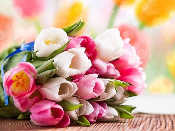 花朵 (10)