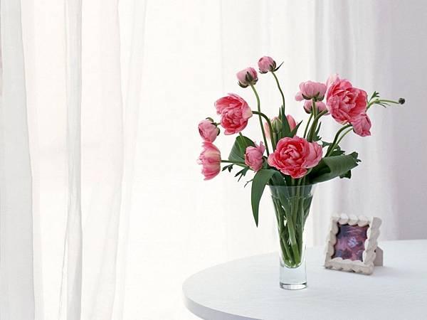 花朵 (31)