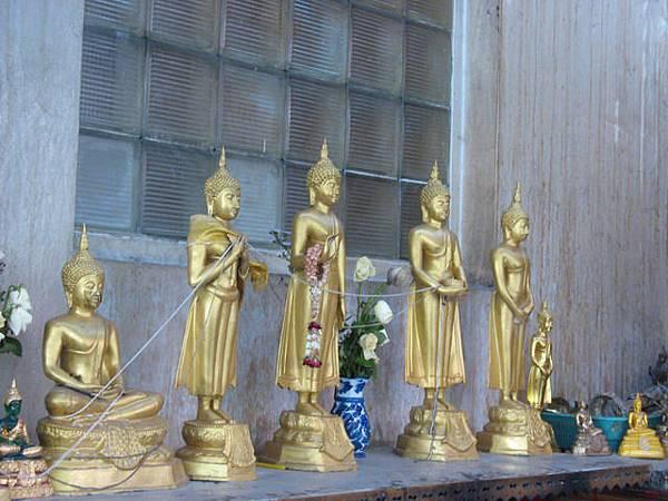 被拐去看lucky buddha3