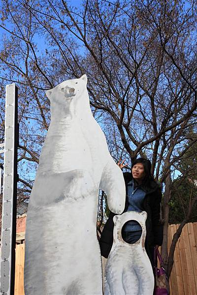 Henry Vilas Park Zoo_Polar Bear 2.JPG