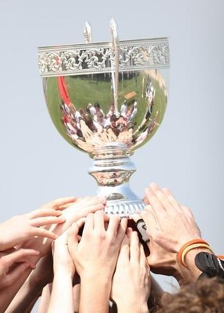 champions-1411861-960-720.jpg