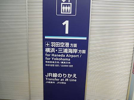 P1050305.JPG