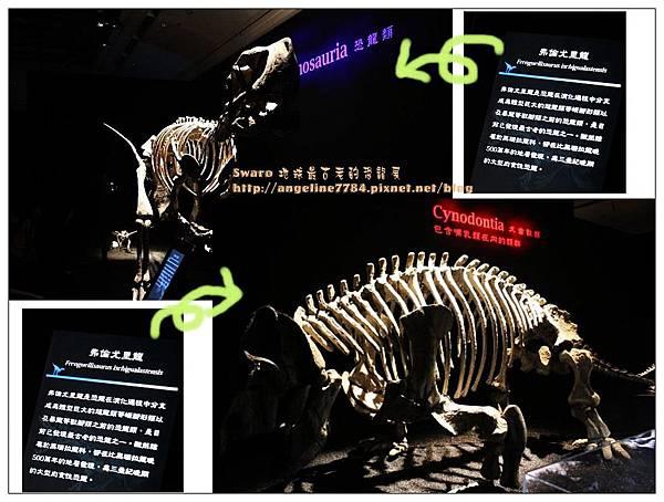 1.恐龍介紹_nEO_IMG