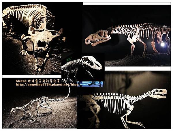 3. 整隻化石_nEO_IMG