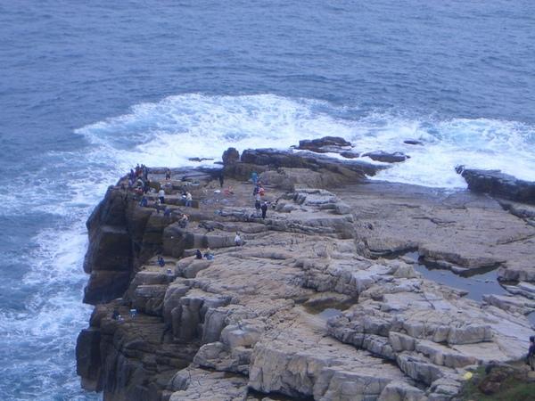 這是龍洞岬吸引許多釣客