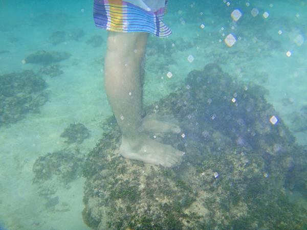 踩在海中的石頭上
