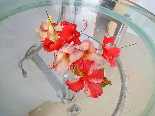 這是洗手檯,有鮮花好漂亮~