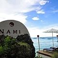 NAMI的標誌