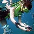 浮在水面的我~很認真在拍魚兒~