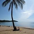 我也要優閒的椰子樹下曬太陽照~