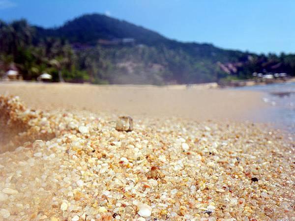 越接近海岸的沙反而越粗~