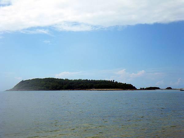 對面看起來是個充滿了樹木的迷你島嶼