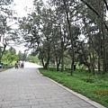 漫步在看不見盡頭的公園