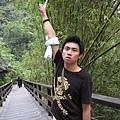 竹林竹林~ 要前往瀑布的路