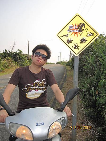 路邊告示牌~要小心押到小動物呢!好多種類喔~