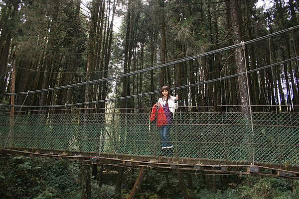 吊橋上有個美女~