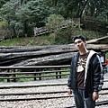 去山上爬ㄌㄧ圈~才發現~神木原來是在車站前= =