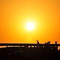 碼頭的夕陽