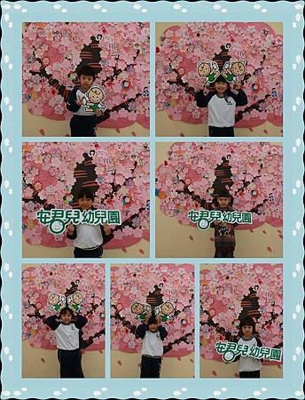 櫻花樹 獨照2