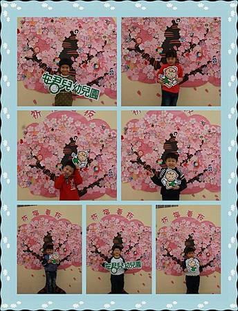 櫻花樹 獨照3